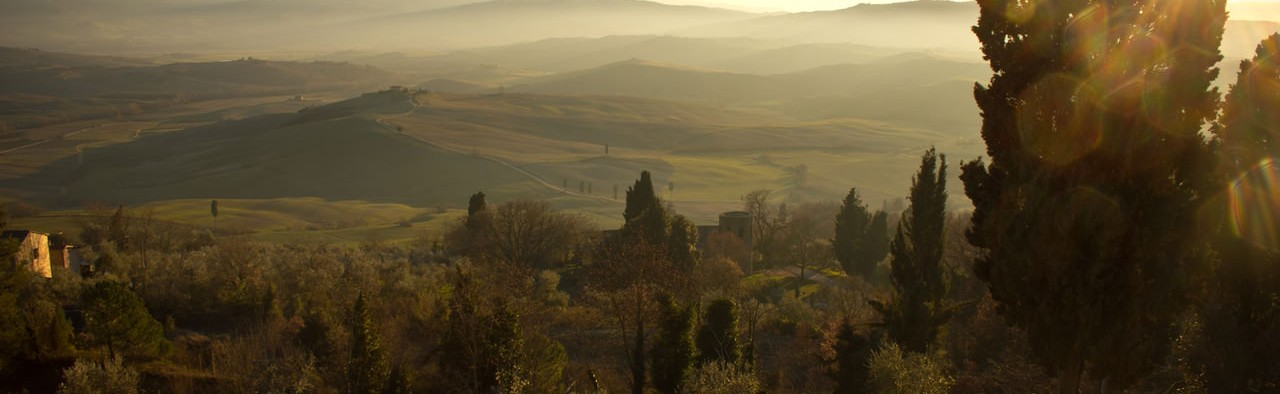 paysage brume ELOFICASH